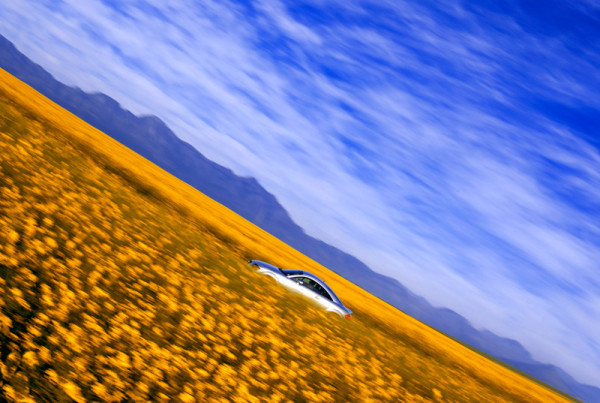 7_Audi-TT-Canola-Fields